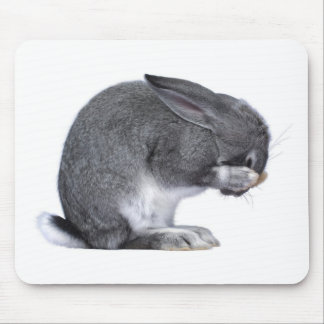 Despairing Rabbit Mouse Pad