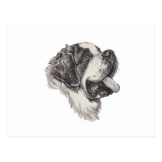Dessin d'art de fusain de chien de St St Bernard Carte Postale