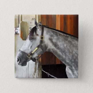 Destin - Horse Haven 2 Inch Square Button