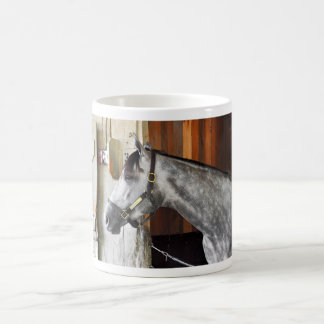 Destin - Horse Haven Coffee Mug
