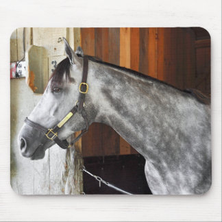 Destin - Horse Haven Mouse Pad