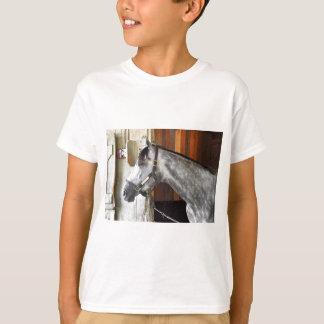 Destin - Horse Haven T-Shirt
