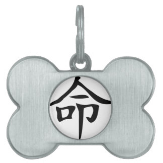 Destiny Chinese Character Pet Tag