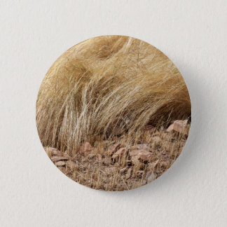Detail of a teff field during harvest 2 inch round button