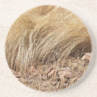 Detail of a teff field during harvest coaster