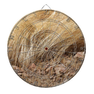 Detail of a teff field during harvest dartboard