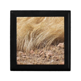 Detail of a teff field during harvest gift box
