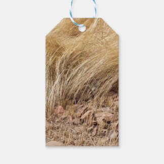 Detail of a teff field during harvest gift tags
