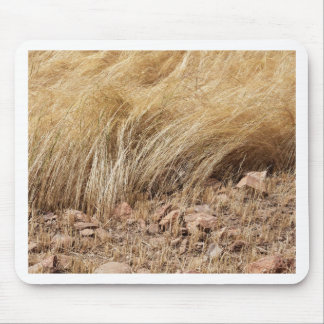 Detail of a teff field during harvest mouse pad
