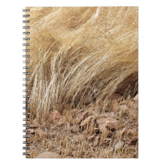 Detail of a teff field during harvest notebook