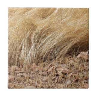 Detail of a teff field during harvest tile