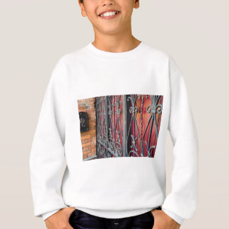 Detail of an old iron fence sweatshirt