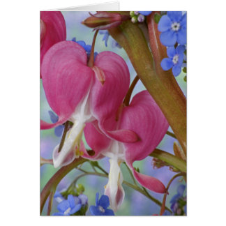 Detail of bleeding hearts and Brunnera Jack Greeting Card