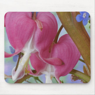 Detail of bleeding hearts and Brunnera Jack Mouse Pad