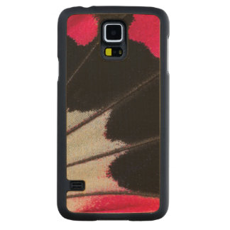 Detail Wing Pattern of Tropical Butterfly Carved Maple Galaxy S5 Case