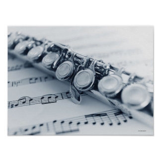 Detailed Flute Poster