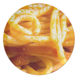 Detailed macro view on cooked spaghetti on a plate