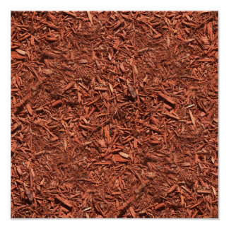 detailed mulch of red cedar for landscaper poster