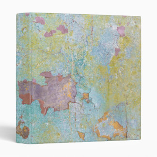 Details of Painted Wall | Fort Hayden, WA 3 Ring Binder