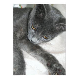Détente grise mignonne de chaton cartons d'invitation personnalisés