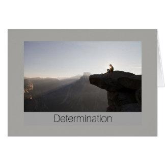 Determination card