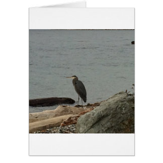 Determination of the Egrets Card