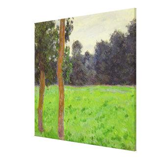 Deux Arbres dans la Prairie Canvas Print