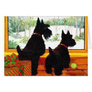 Deux chiens de Scotty à Noël Carte De Vœux