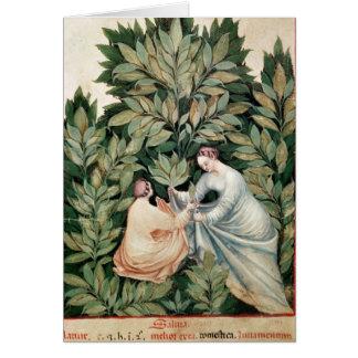 Deux femmes sélectionnant la sauge, de 'Tacuinum Cartes