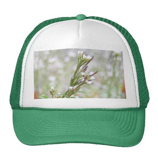 Developing Seed Pods - Bittercress Trucker Hats