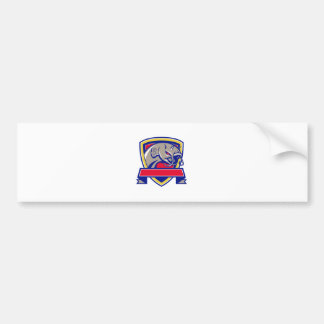 Devil Catfish Head Shield Retro Bumper Sticker