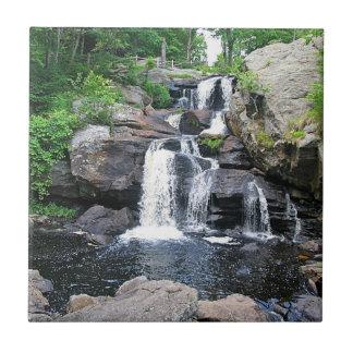 Devil's Hopyard Waterfall Trivet