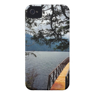 Devils Punch Bowl Olympic National Park iPhone 4 Cases