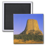 Devils Tower National Monument in Wyoming Fridge Magnet