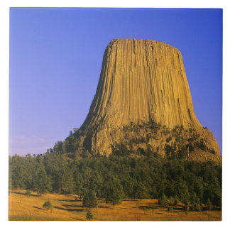 Devils Tower National Monument in Wyoming Tile