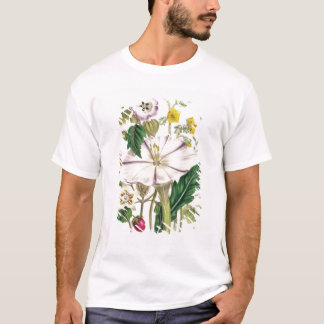 Devil's Trumpet, plate 46 from 'The Ladies' T-Shirt