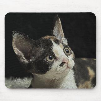 Devon Rex Kitten Mouse Pad