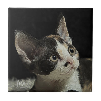 Devon Rex Kitten Tile