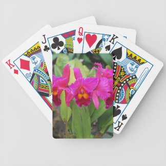 Devoted Sisters- vertical Bicycle Playing Cards
