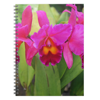 Devoted Sisters- vertical Notebook
