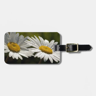 Dew Bejeweled Ox-eye Daisy Wildflowers Luggage Tag