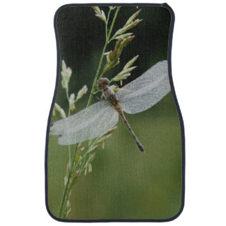 Dew covered Darner Dragonfly Car Liners