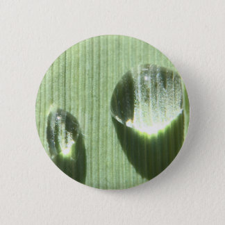 Dew Drops 2 Inch Round Button