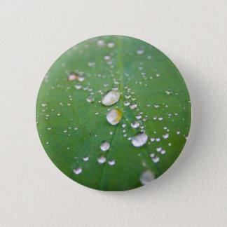 Dew Drops 2 Inch Round Button
