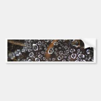 Dew drops in a spider net bumper sticker