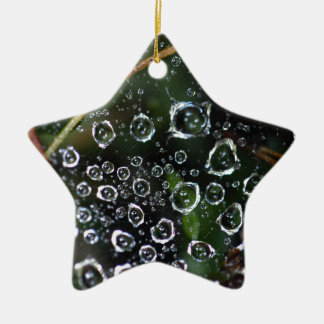 Dew drops in a spider net ceramic star ornament