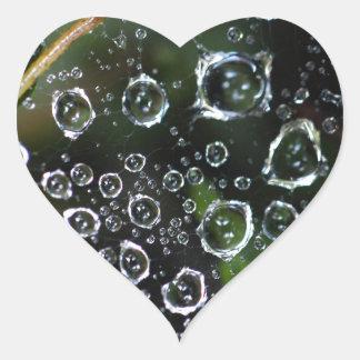 Dew drops in a spider net heart sticker