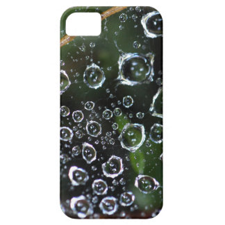 Dew drops in a spider net iPhone 5 cases