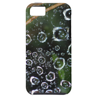 Dew drops in a spider net iPhone 5 cover