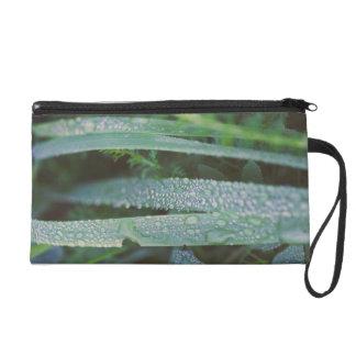 Dew drops in the grass wristlet purses